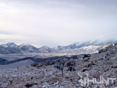Snowy Landscape in Nevada